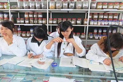 成都郫县希望职业技术学校-药剂专业
